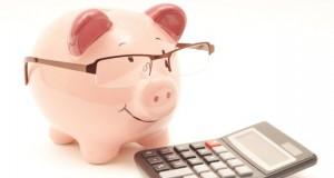 Budget-pig